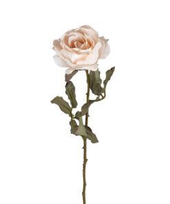 -FL-0016 - Flower Rose Cream (12 pieces)